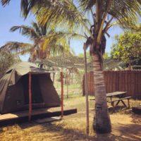 Mini tents:campsite