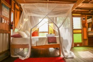 Mozambeat Motel private ensuite cabins, Diana Ross 3