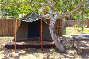 Mozambeat Motel tents and camping 2